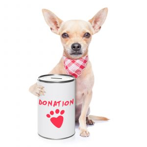 Fundraising Ideas and Tips - Donations tin
