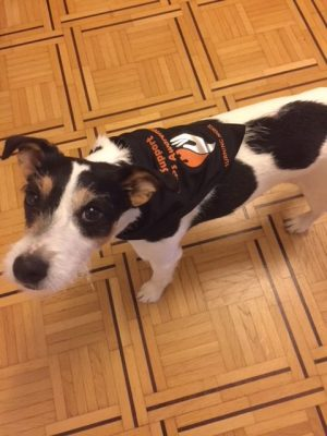 Billy from Switzerland is supporting CRPS awareness with his new Burning Nights CRPS Awareness Pet Bandana