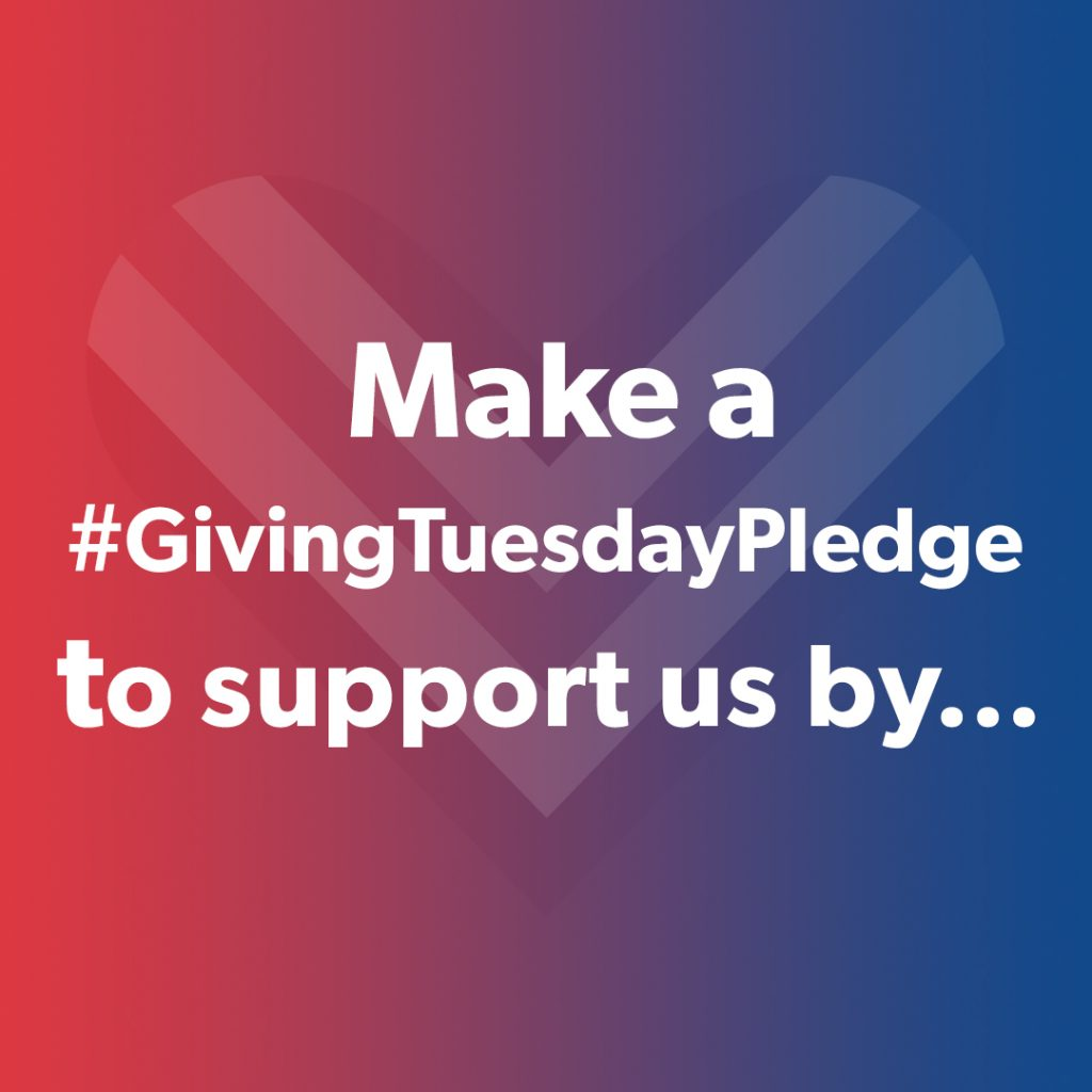 Make a Giving Tuesday pledge to support us by volunteering, making a donation. talk at your local school or give an interview